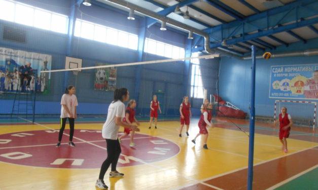 Состоялись районные соревнования по волейболу школьной любительской лиги